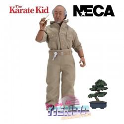Mr Miyagi, Karate Kid,...