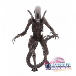 Alien Warrior, Alien...