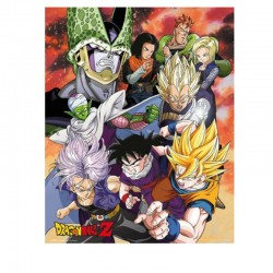 Set de Poster Dragon Ball...